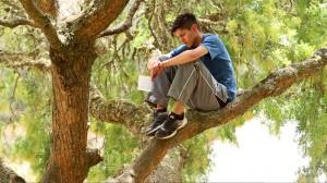 Danny-in-Tree